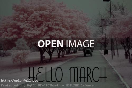 Hello 1st march