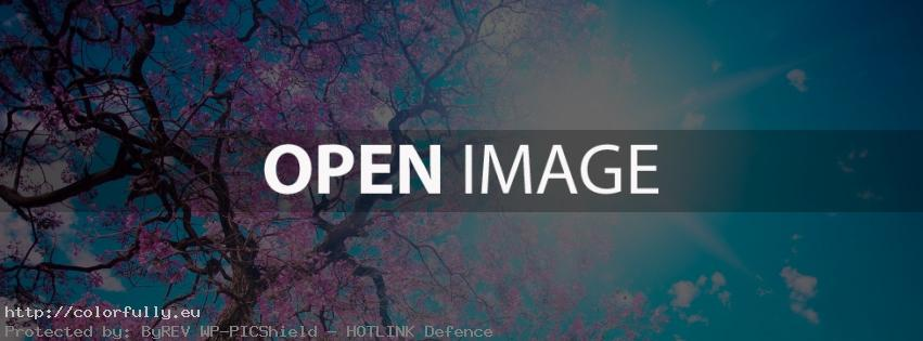 Pink Spring tree – Facebook-cover