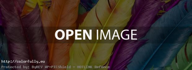 Colorful feathers – Facebook cover