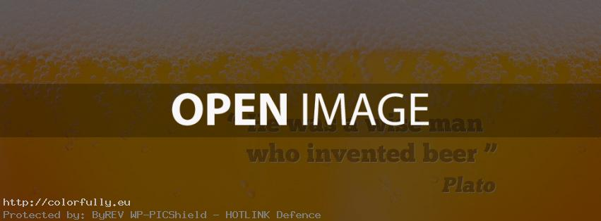 He was a wise man who invented beer - Facebook cover