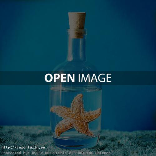Sea star in a bottle