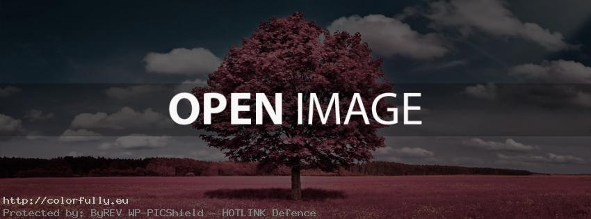 Field with pink lonely tree – Facebook cover