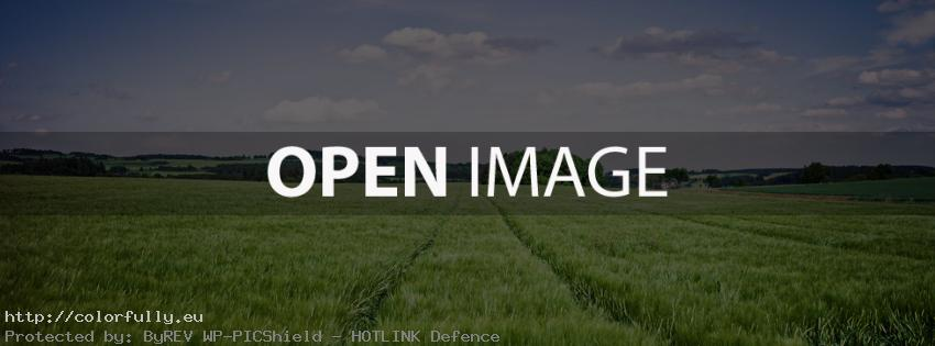 Green field with grass - Facebook cover