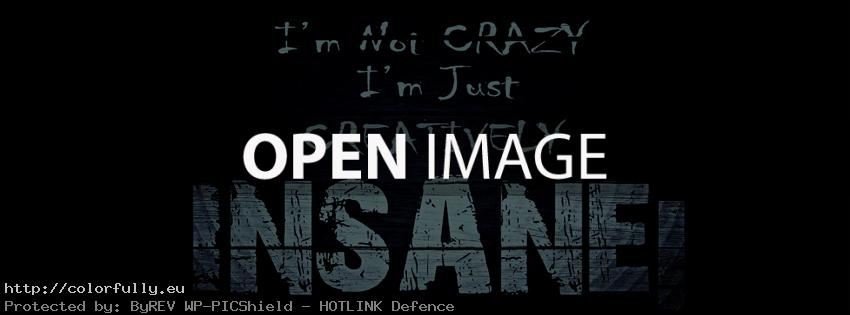 I am not crazy, i am just creatively insane - Best Facebook Covers