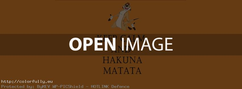 Keep calm and Hakuna Matata – Facebook cover