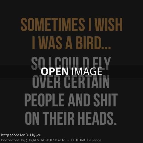 Sometimes i wish i was bird...so i could fly over certain people and shit on their heads
