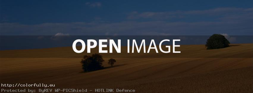 Wild yellow field – Facebook cover