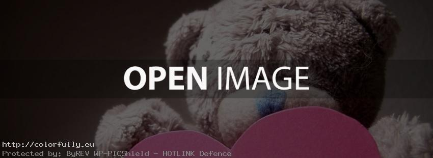Sweet bear with pink heart – Facebook cover