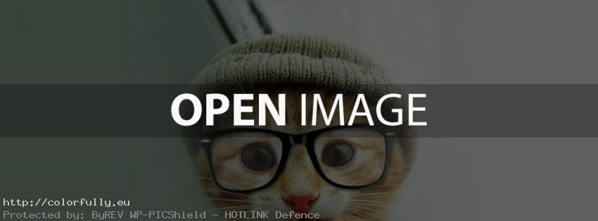 Cute kitty cat with glasses- Facebook cover