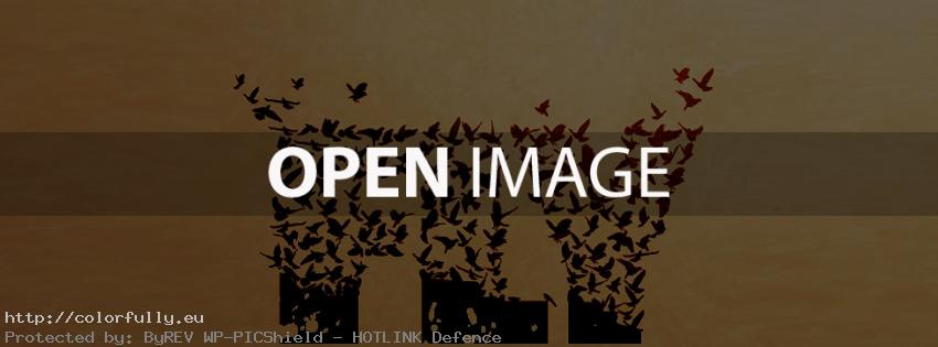 Fly text with birds – Facebook cover