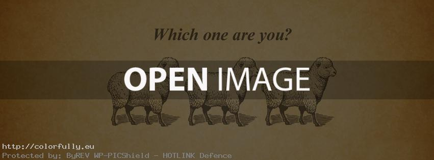 Follow like sheep or fly like an eagle – Facebook cover