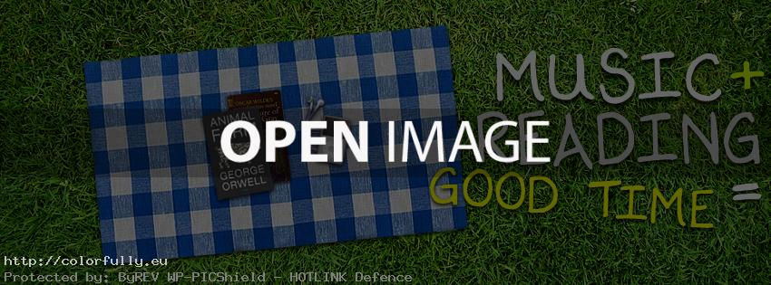 Picnic: music + reading = good time – Facebook cover