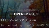 text-seasons-summer-autumn-spring-winter-people-change