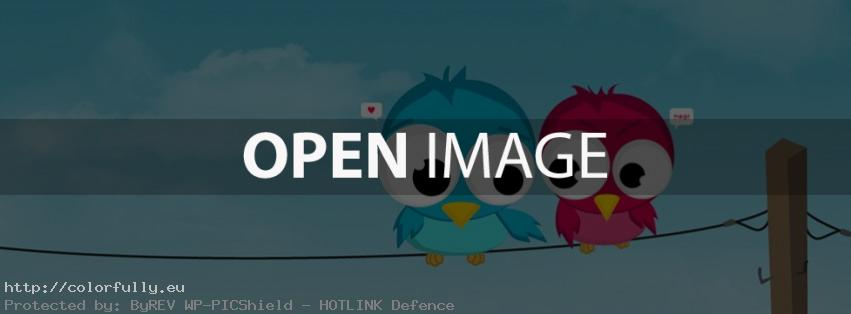 Birds in love - Facebook cover