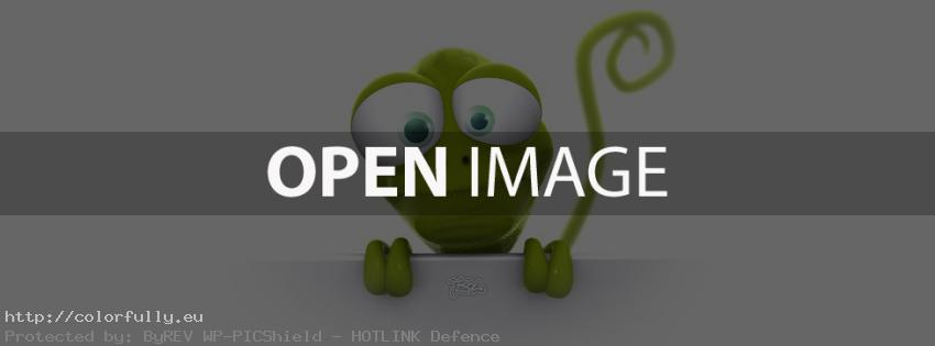 Funny green lizard – Facebook cover