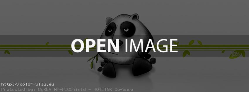 Funny panda - Facebook cover