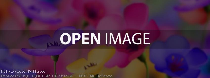 Very colorful flowers – Facebook cover