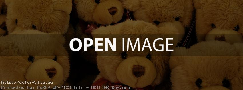 A lot of sweet teddy bears – Facebook cover