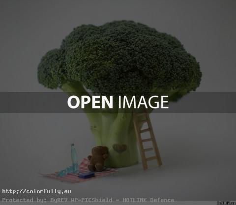 Cauliflower tree- Creative photo manipulation