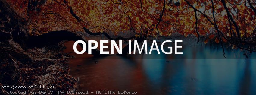 colored-contrast-autumn-tree-dry-leaves-river-facebook-cover