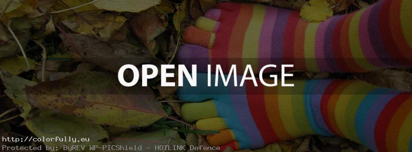 Colorful autumn happy feet – Facebook cover