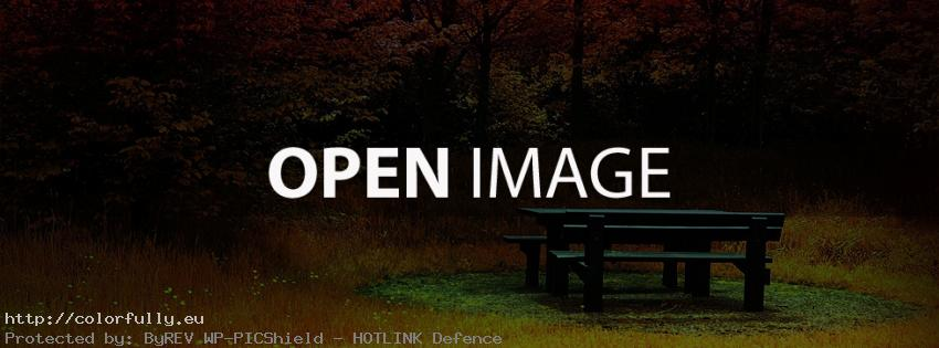 Colorful autumn leaves and picnic bench – Facebook cover