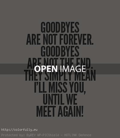 Goodbyes are not forever. Goodbyes are not the end. They simply mean I'll miss you until we meet again!