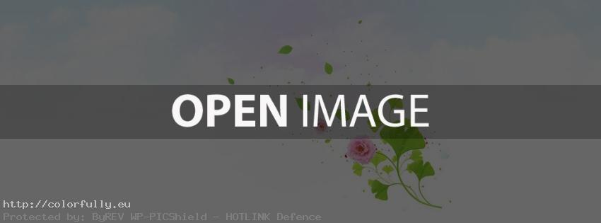 pink-flower-facebook-cover