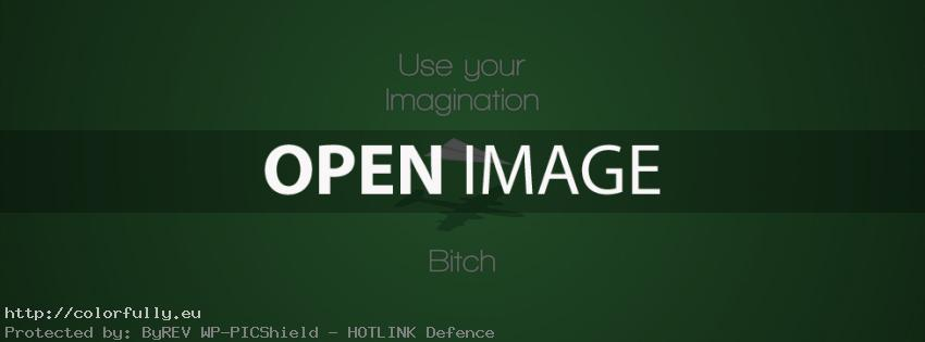 Use your imagination bitch – Facebook cover