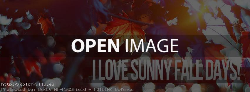 I love sunny fall days – Facebook cover