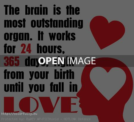 The brain is the most outstanding organ, it works right from your birth until you fall in love