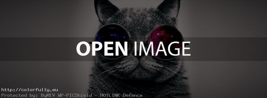 Cat with sun glasses – Facebook cover