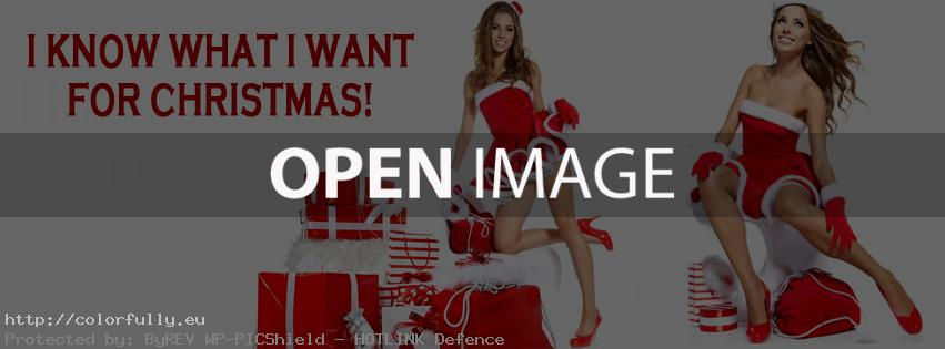 i-know-what-i-want-for-christmas-facebook-covers2