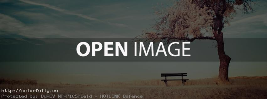 Field with lonely tree and a bench – Facebook cover