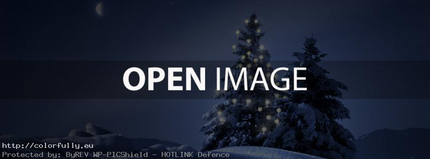 Christmas tree – Facebook cover