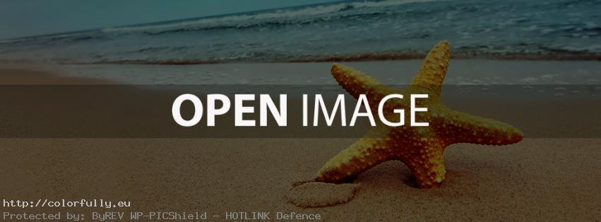 Sea star – Facebook cover