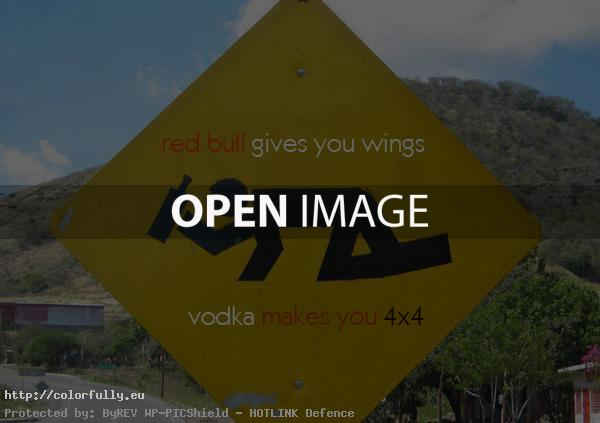 Red Bull gives you wings….