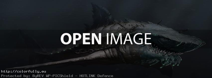 Shark – Facebook cover