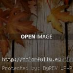 Welcome October fall 150x150 Hello October   Top autumn images