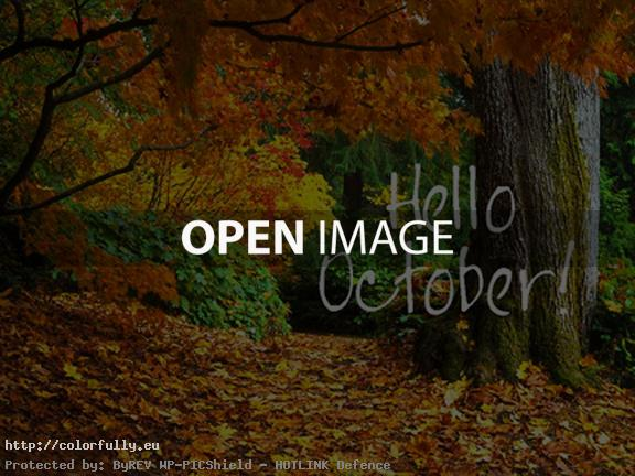 Hello October – Top autumn images