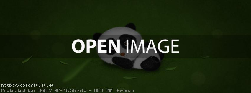 Cute panda – Facebook cover
