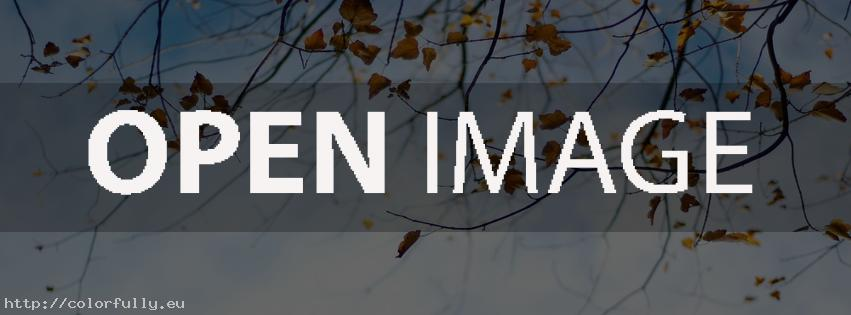 Autumn leaves season – Facebook cover