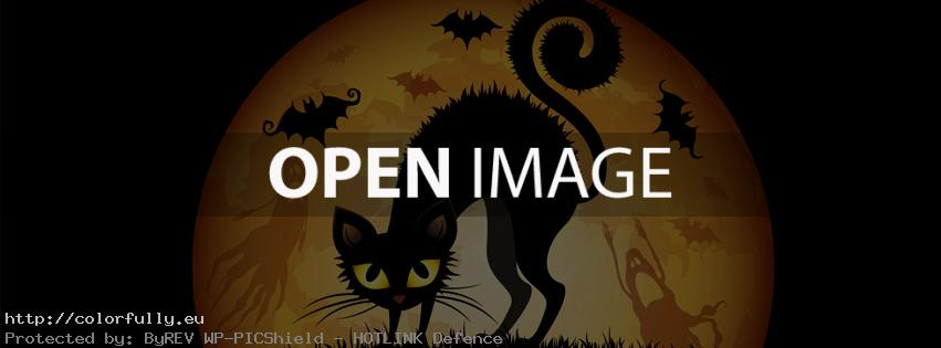 Colorfully » Free Facebook Covers » Halloween Black Cat – Facebook ...