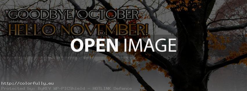 Goodbye October, Hello November! – Facebook cover