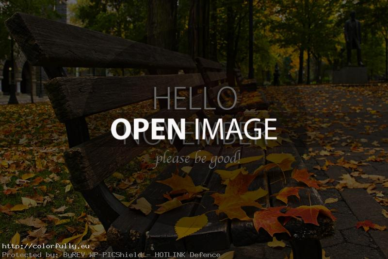 Colorfully » Free Facebook Covers » Hello November! Please ...