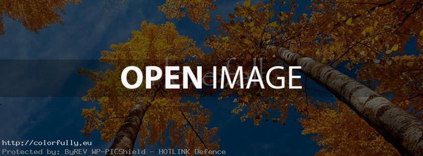 I love fall – Facebook cover