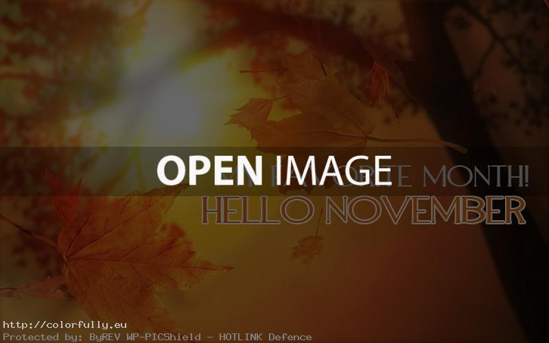Hello November! My favorite month!