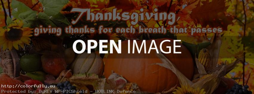 Thanksgiving – Facebook cover