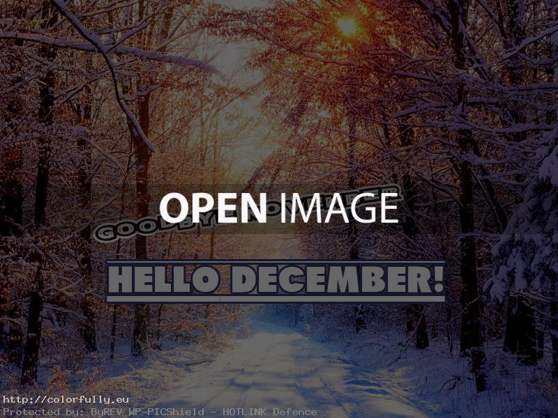 Goodbye November! Hello December!