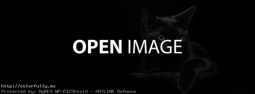 Black cat – Facebook cover
